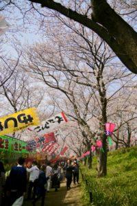 権現堂 桜祭り 屋台