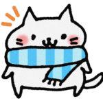 冬の寝るときに首が寒い!首や肩を温めるグッズや寝具での寒さ対策